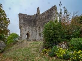 Domfront castle